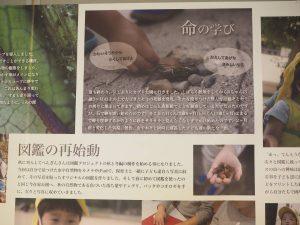 """ひとりの""""好き""""が、みんなを巻き込む——イベントレポート「0〜2歳児の遊びの中で芽生える科学のこころ」(2/2)"""