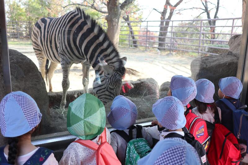 動物園に行く子どもたち